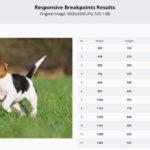 responsivebreakpoints.com
